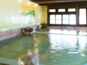 嬉野温泉うれしの源泉百年の湯
